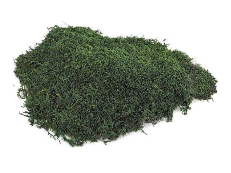 Mech Płaski Ciemnozielony Moss Green 05kg