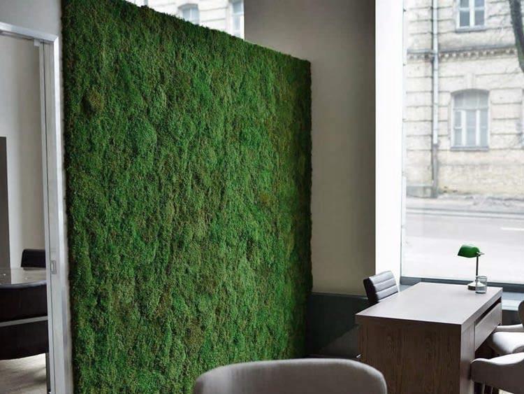 Mech Płaski Ciemnozielony Moss Green 100g