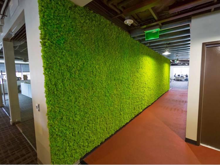 Panel z mchu chrobotka na ścianę Spring Green 45x45cm