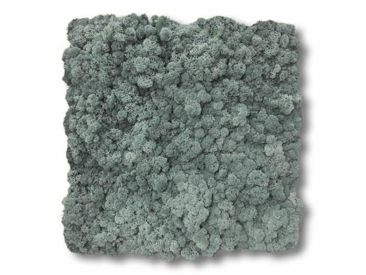 Panel z mchu chrobotka na ścianę Ice Blue 45x45cm