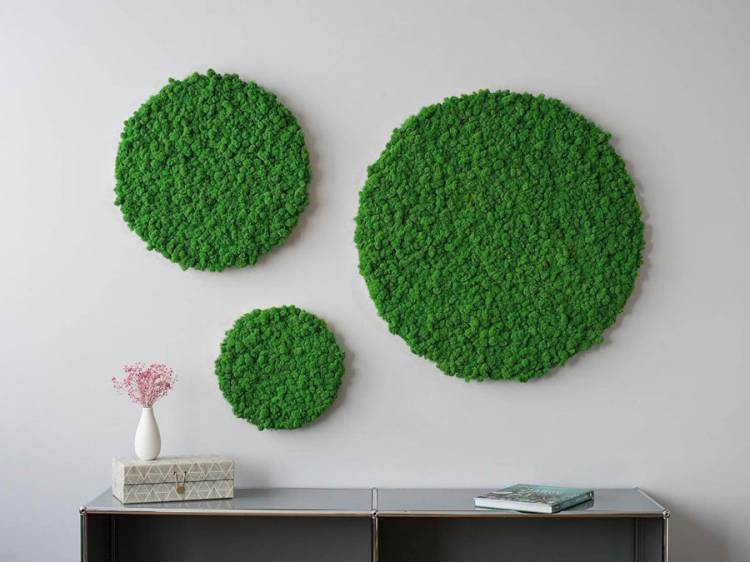 Panel z mchu chrobotka okrągły Moss Green