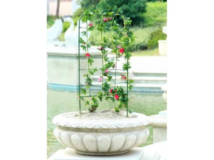 Podpora drabinkowa do roślin 75cm