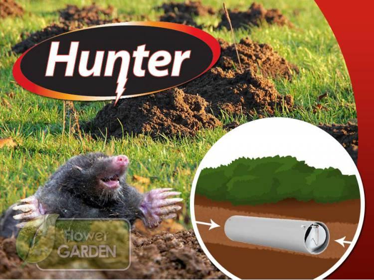 Kretołap Hunter