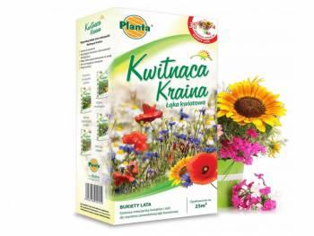 Trawnik Kwitnąca Kraina - Bukiety lata