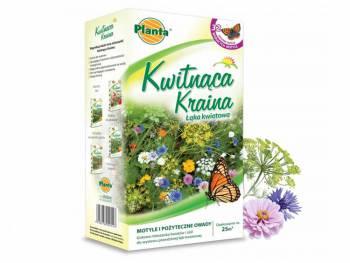 Trawnik Kwitnąca Kraina - Motyle i pożyteczne owady