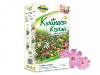 Trawnik Kwitnąca Kraina - Pachnący zakątek