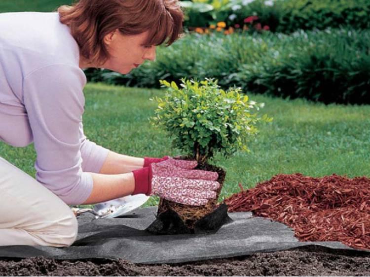 Agrotkanina 70g czarna pod korę, zrębki, kamienie