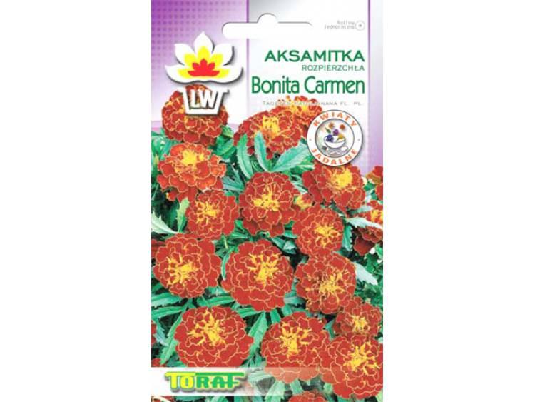 Nasiona Aksamitka rozpierzchła Bonita Carmen 1g