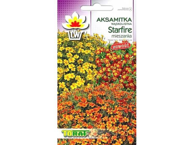 Nasiona Aksamitka wąskolistna Starfire mieszanka 0,5g
