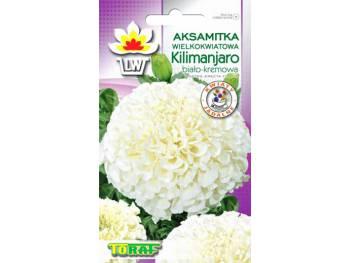 Nasiona Aksamitka wielkokwiatowa Kilimajaro 0,3g