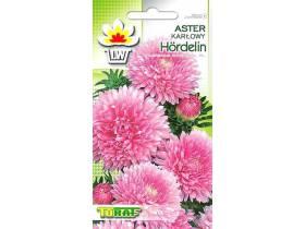 Nasiona Aster karłowy Hordelin 1g