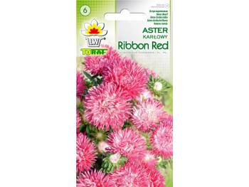Nasiona Aster karłowy Ribbon Red 0,5g