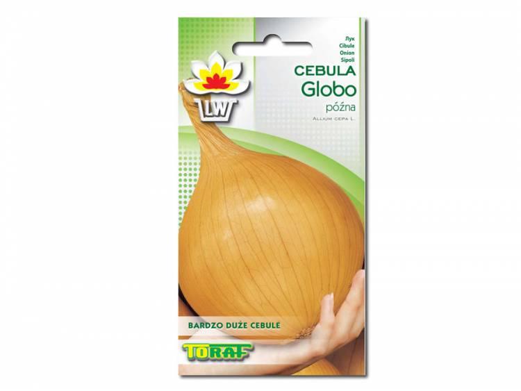 Nasiona Cebula Globo 2g
