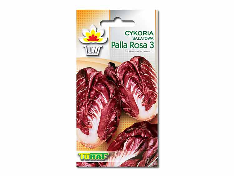 Nasiona Cykoria sałatowa Palla Rosa 3 5g