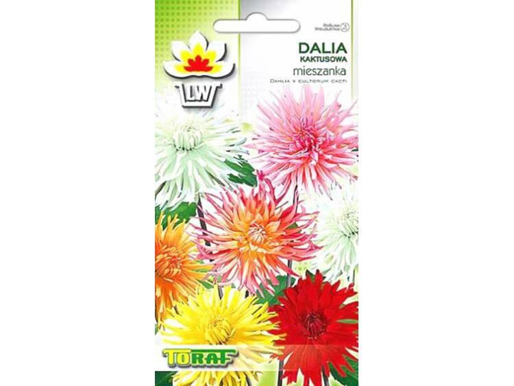 Nasiona Dalia kaktusowa mieszanka 0,5g