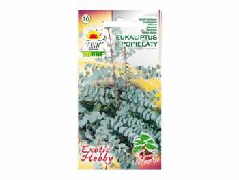 Nasiona Eukaliptus popielaty 0,1g