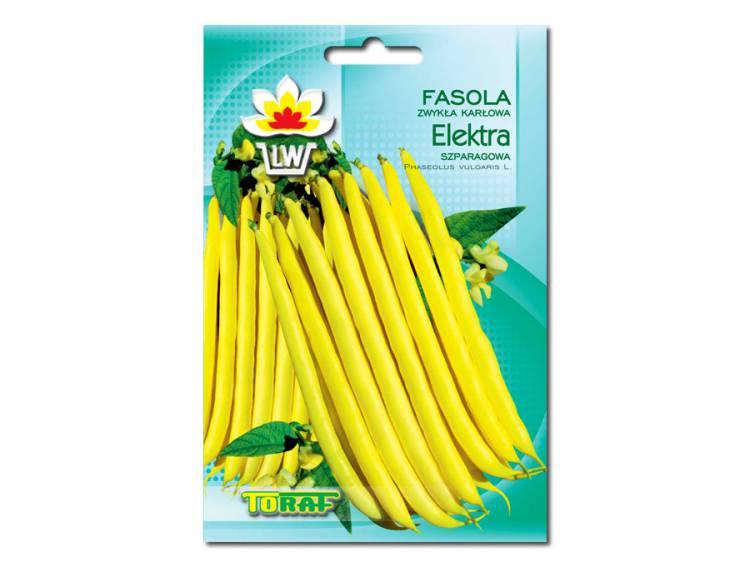 Nasiona Fasola Elektra 50g
