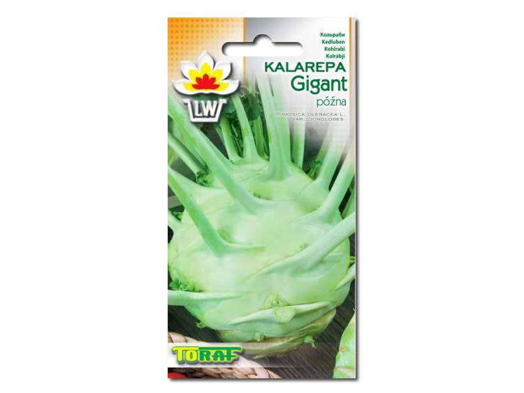 Nasiona Kalarepa Gigant 2g