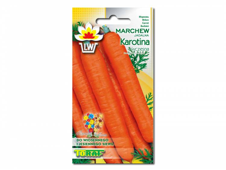 Nasiona Marchew Karotina 5g