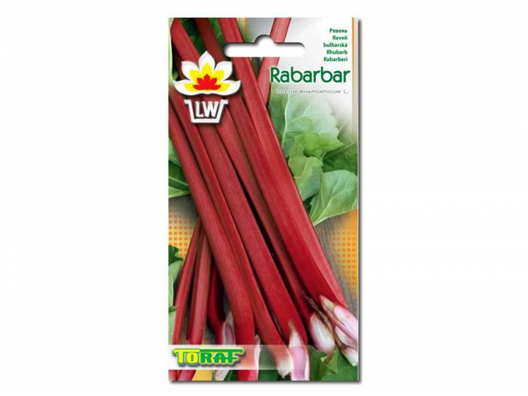 Nasiona Rabarbar Victoria 0,5g