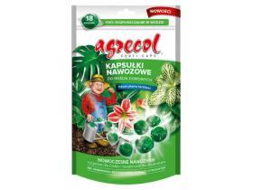 Kapsułki nawozowe do roślin domowych 18szt. Agrecol