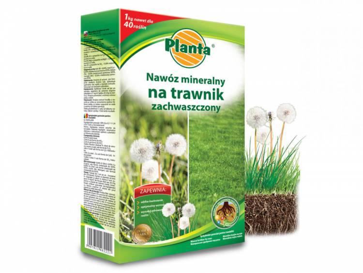 Nawóz na trawnik zachwaszczony PLANTA 1kg
