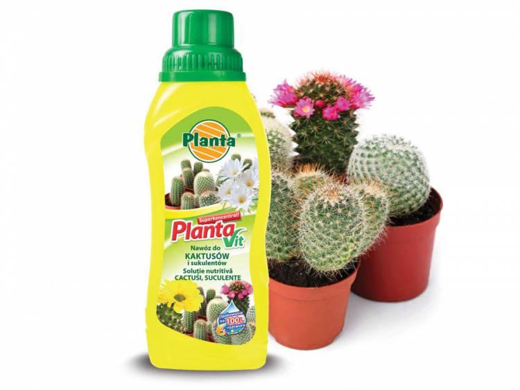 Nawóz płynny do kaktusów PLANTA 250ml