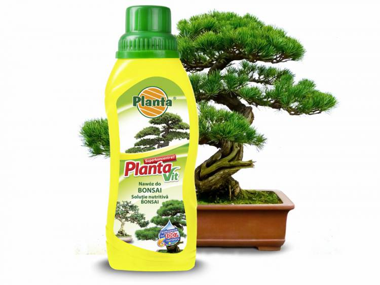 Nawóz płynny do bonsai PLANTA 250ml