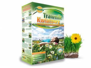 Trawnik KWIATOWY - efekt łąki kwiatowej