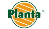 http://www.flower-garden.pl/planta